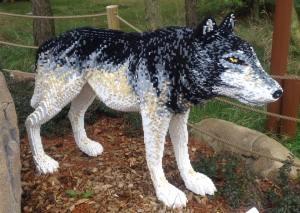 wolf at LLvillage